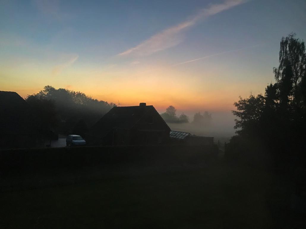 nebel wiesmoor